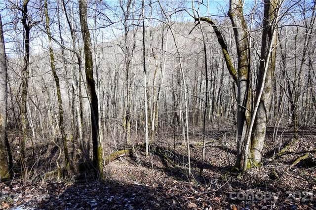 L9 Walnut Cove Ridge Lot 9, Bryson City, NC 28713 (#3706377) :: Mossy Oak Properties Land and Luxury