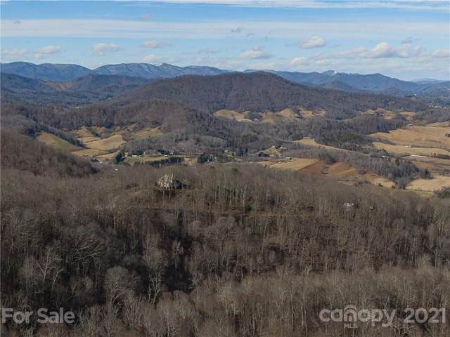 156 View Ridge Parkway #90, Leicester, NC 28748 (#3706379) :: The Allen Team