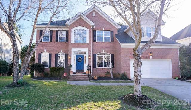 4361 Sunset Rose Drive, Fort Mill, SC 29708 (#3706521) :: LKN Elite Realty Group | eXp Realty