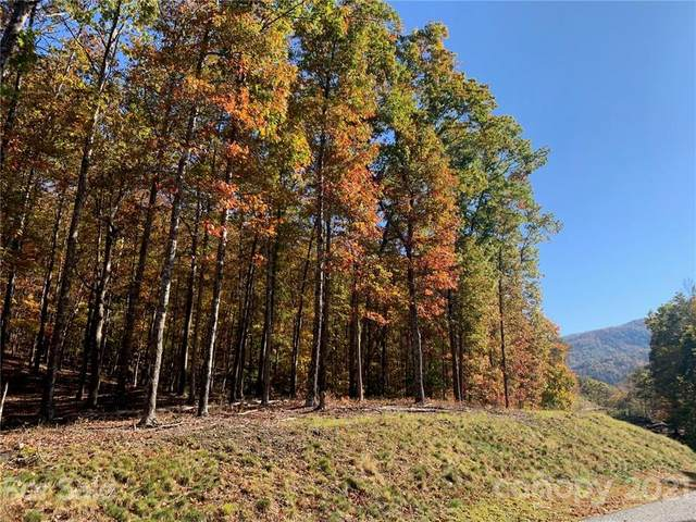4110 French Broad Parkway #55, Marshall, NC 28753 (#3706671) :: LePage Johnson Realty Group, LLC