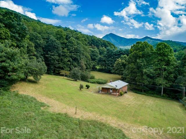 31 Bens Cove Road, Candler, NC 28715 (#3706702) :: Keller Williams Professionals