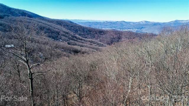 9999 Mountain Lily Ridge Drive, Swannanoa, NC 28778 (#3706916) :: The Ordan Reider Group at Allen Tate