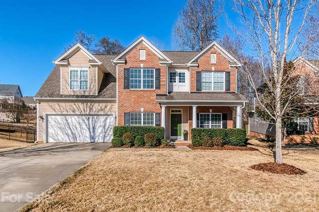 10583 Tintinhull Drive, Indian Land, SC 29707 (#3706955) :: Bigach2Follow with Keller Williams Realty