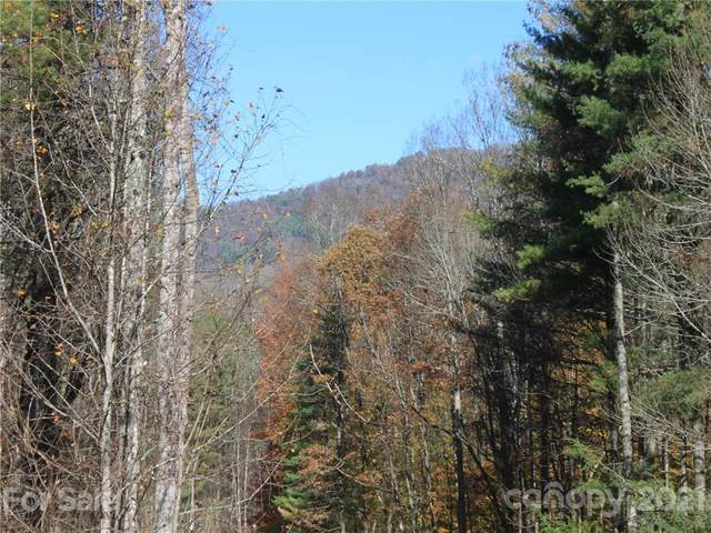 0 Carolina Keep Road Portion 1, Green Mountain, NC 28740 (#3706972) :: The Allen Team