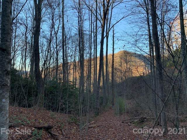 Lot 29B Timber Estates Road 29B, Bryson City, NC 28713 (MLS #3707078) :: RE/MAX Journey
