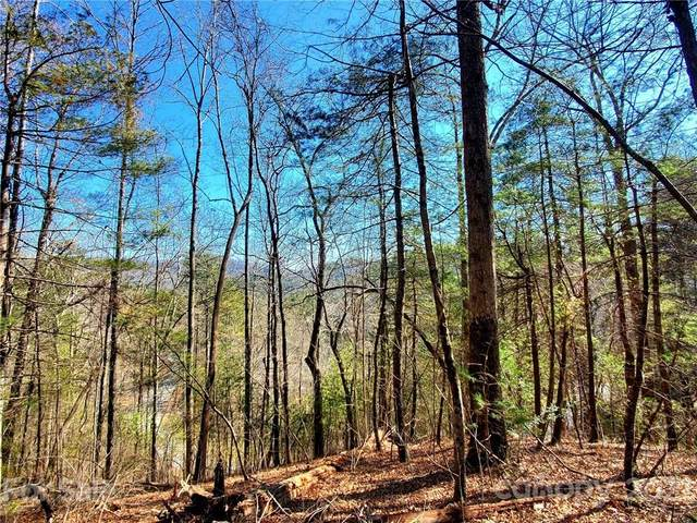 0 Big Hungry Road Lot 5, Flat Rock, NC 28731 (#3707778) :: TeamHeidi®