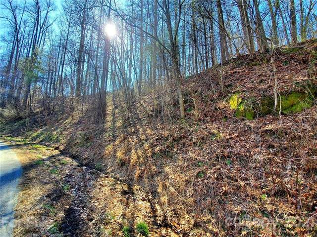 0 Big Hungry Road Lot 8, Flat Rock, NC 28731 (#3707834) :: Carver Pressley, REALTORS®
