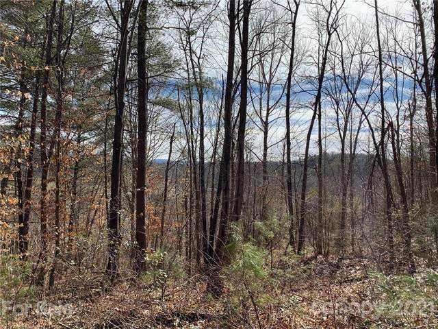 12 Willow Knoll Drive, Weaverville, NC 28787 (#3708248) :: Mossy Oak Properties Land and Luxury