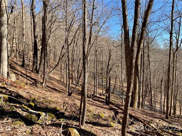 Lot 78 Goldenleaf Road, Egypt, NC 28754 (#3708688) :: Willow Oak, REALTORS®