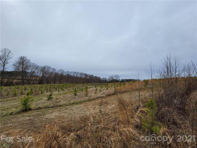 16 +/- AC Bolton Road, Catawba, NC 28609 (#3708759) :: LePage Johnson Realty Group, LLC