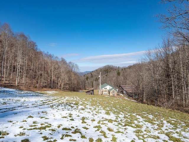 1051 Doug Cove Road, Marshall, NC 28753 (#3708984) :: LePage Johnson Realty Group, LLC