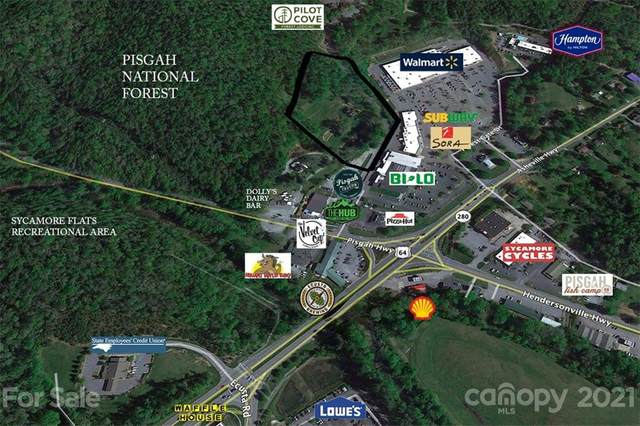 113 Mamas Place Place, Pisgah Forest, NC 28768 (#3709037) :: Keller Williams Professionals