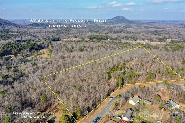 000 Pinnacle Road, Kings Mountain, NC 28086 (#3709345) :: TeamHeidi®