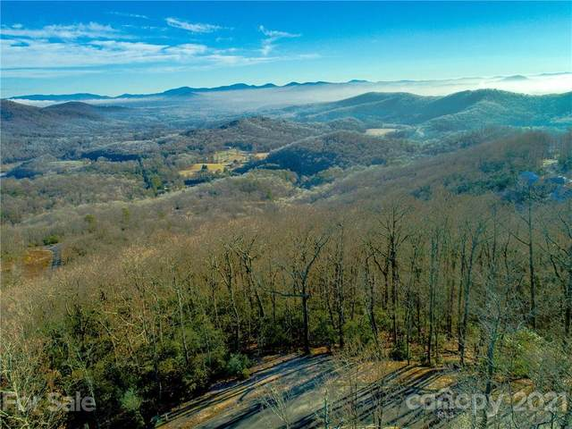 1114 Mills River Way #47, Horse Shoe, NC 28742 (#3709479) :: Carolina Real Estate Experts