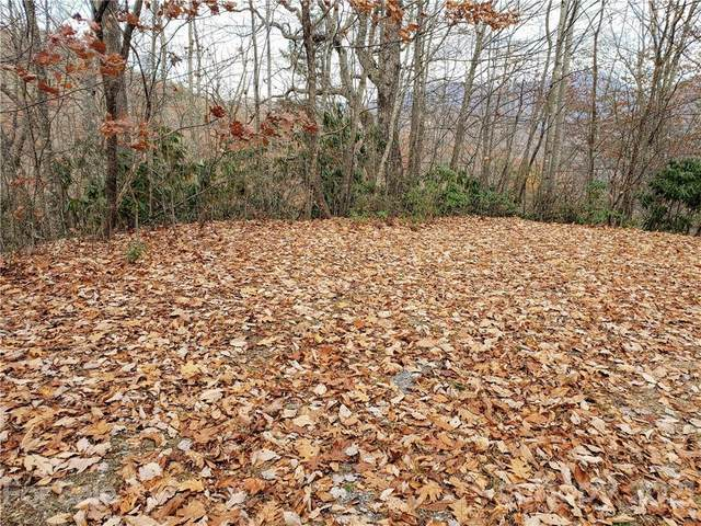 00 Autumn Drive #3, Waynesville, NC 28785 (#3709610) :: Bigach2Follow with Keller Williams Realty