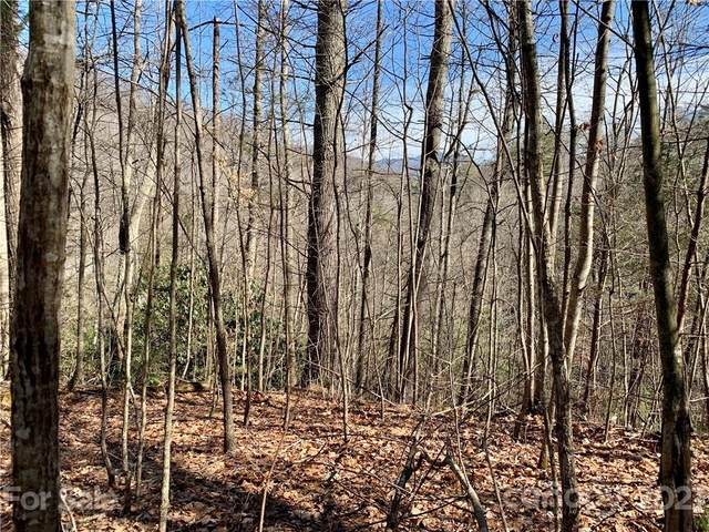 Lots 43/44 Poppi Drive, Waynesville, NC 28785 (#3709692) :: Carolina Real Estate Experts