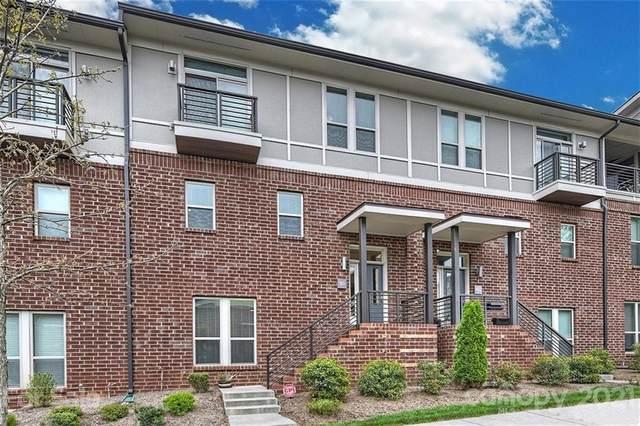 923 Steel House Boulevard, Charlotte, NC 28205 (#3709819) :: LKN Elite Realty Group | eXp Realty