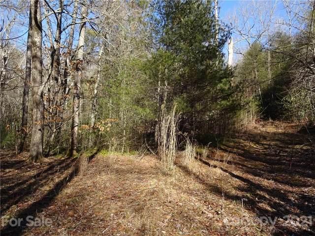 1555 Pleasant Grove Church Road, Hendersonville, NC 28739 (#3710136) :: Austin Barnett Realty, LLC
