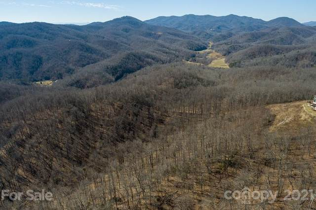 107 Autumn Lane #3, Black Mountain, NC 28711 (#3710149) :: TeamHeidi®