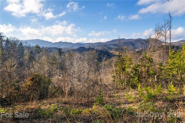 000 Mearwild Drive #43, Marshall, NC 28753 (#3710290) :: The Allen Team
