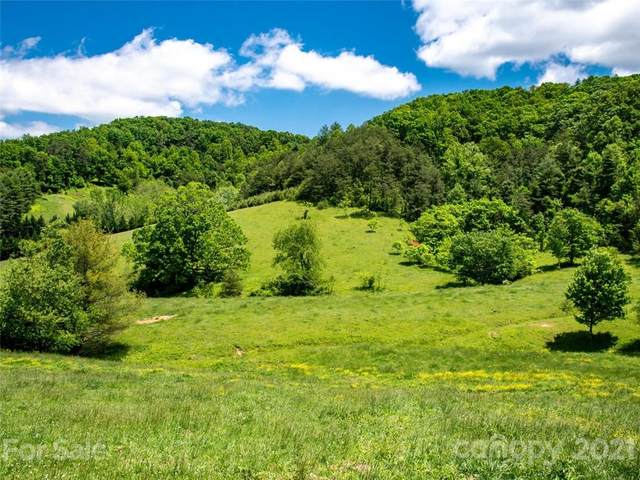 432 Green Valley Road, Leicester, NC 28748 (#3710744) :: NC Mountain Brokers, LLC