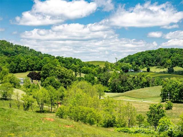 432 Green Valley Road, Leicester, NC 28748 (#3710796) :: NC Mountain Brokers, LLC