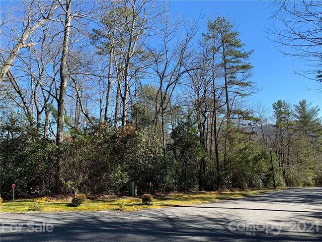 M51 Stone Creek Trail M51, Brevard, NC 28712 (#3711493) :: Carolina Real Estate Experts