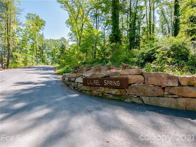 LOT 8 Laurel Spring Lane, Hendersonville, NC 28739 (#3711856) :: Stephen Cooley Real Estate Group
