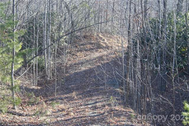 TBD Lake George Road #973, Old Fort, NC 28762 (#3712288) :: Caulder Realty and Land Co.