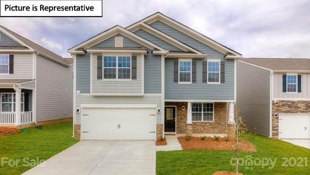 816 Larmore Avenue #4025, Charlotte, NC 28216 (#3712324) :: The Sarver Group
