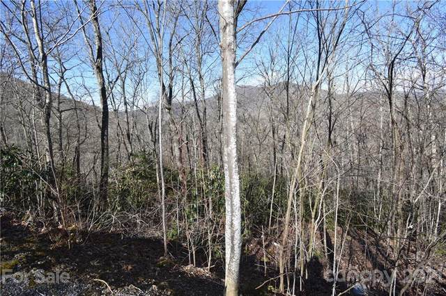 Lot 26 Henry Dingus Way #26, Maggie Valley, NC 28751 (#3712672) :: Premier Realty NC