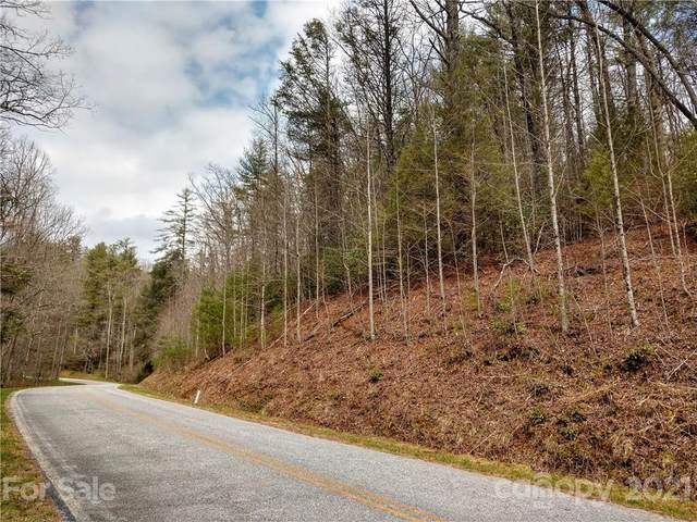 000 Rock Creek Road, Zirconia, NC 28790 (#3712813) :: TeamHeidi®