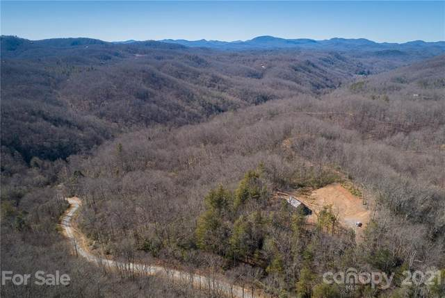 124 Greenbird Trail #124, Rosman, NC 28772 (#3713685) :: Willow Oak, REALTORS®
