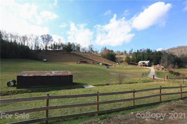 22 Frannys Farm Road, Leicester, NC 28748 (#3714388) :: TeamHeidi®