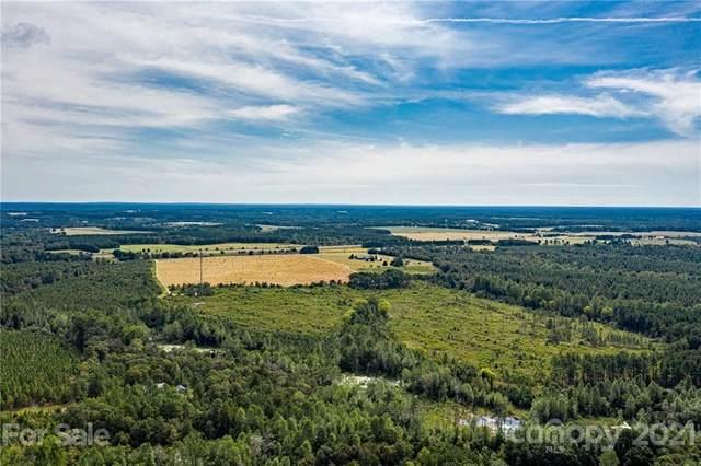 5173 Us Hwy 220 Highway, Ellerbe, NC 28338 (#3714551) :: Mossy Oak Properties Land and Luxury