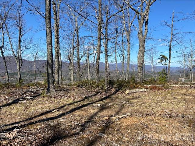 0 Flint Rock Drive #407, Lake Lure, NC 28746 (#3714681) :: High Performance Real Estate Advisors