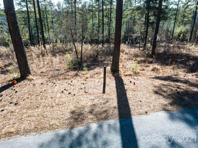 1884 W Paradise Harbor Drive, Connelly Springs, NC 28612 (#3714801) :: Caulder Realty and Land Co.
