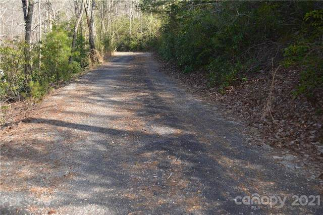 0 Mintwood Court #29, Lake Lure, NC 28746 (#3714833) :: Ann Rudd Group