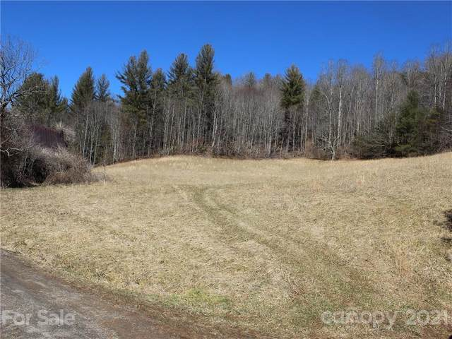 00 Will Anglin Road, Burnsville, NC 28714 (#3715110) :: Carlyle Properties