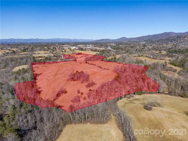 56 Gill Branch Road, Weaverville, NC 28787 (#3715213) :: Modern Mountain Real Estate