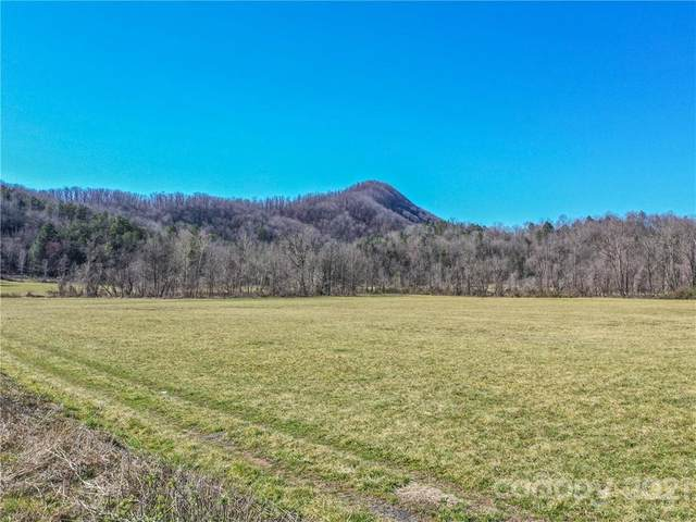 00 Catawba River Road, Old Fort, NC 28762 (#3715236) :: BluAxis Realty