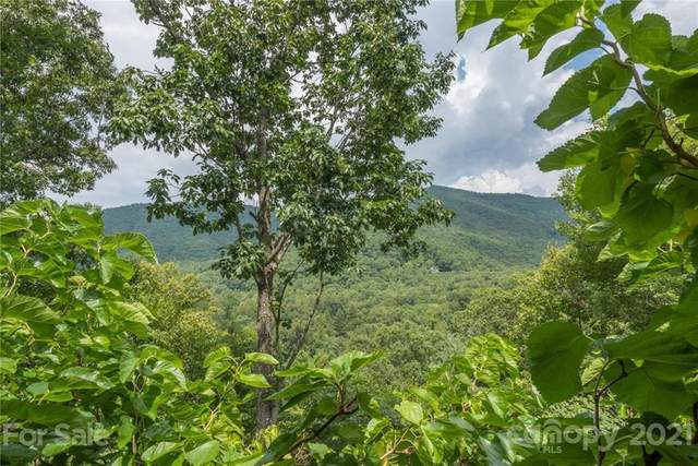 166 Maryland Place #1427, Montreat, NC 28757 (#3715678) :: Carlyle Properties