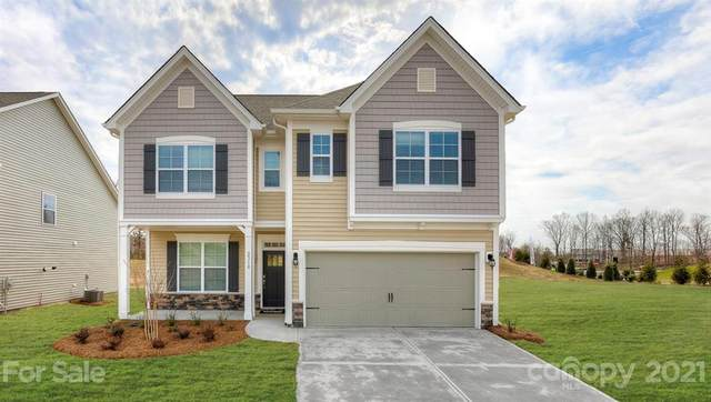 60 Rose Creek Road, Leicester, NC 28748 (#3716036) :: High Performance Real Estate Advisors