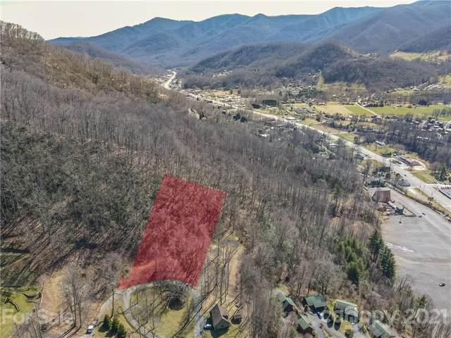 156 Antler Springs Way, Maggie Valley, NC 28751 (#3716061) :: Carlyle Properties