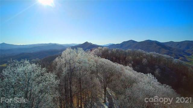 31.66 Acres Cave Summit Trail 102-104, Leicester, NC 28748 (#3716435) :: Keller Williams Professionals