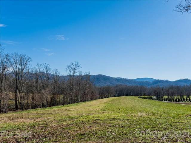 Lot 20 Thistle Lane Lot 20, Fletcher, NC 28732 (#3717421) :: The Premier Team at RE/MAX Executive Realty