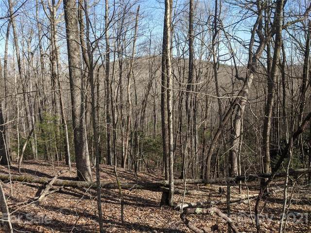 TBD East Fork Road Lot 11 / Unit 3, Brevard, NC 28712 (#3717787) :: Home and Key Realty