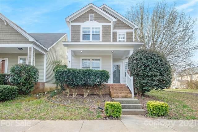 11251 Blue Cedar Lane, Charlotte, NC 28277 (#3718003) :: MartinGroup Properties