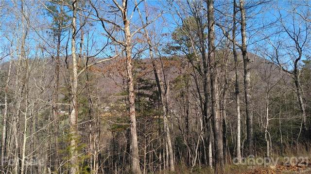 Lot 21 Little Fox Run, Marion, NC 28752 (#3718710) :: The Allen Team