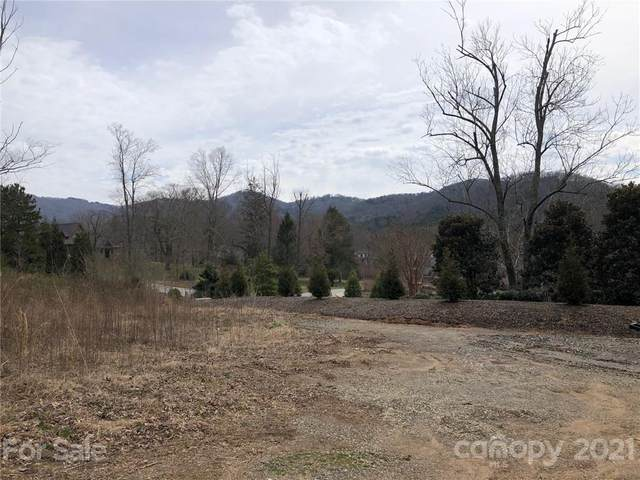 81 Elk Mountain Scenic Highway #1, Asheville, NC 28804 (#3719004) :: MOVE Asheville Realty